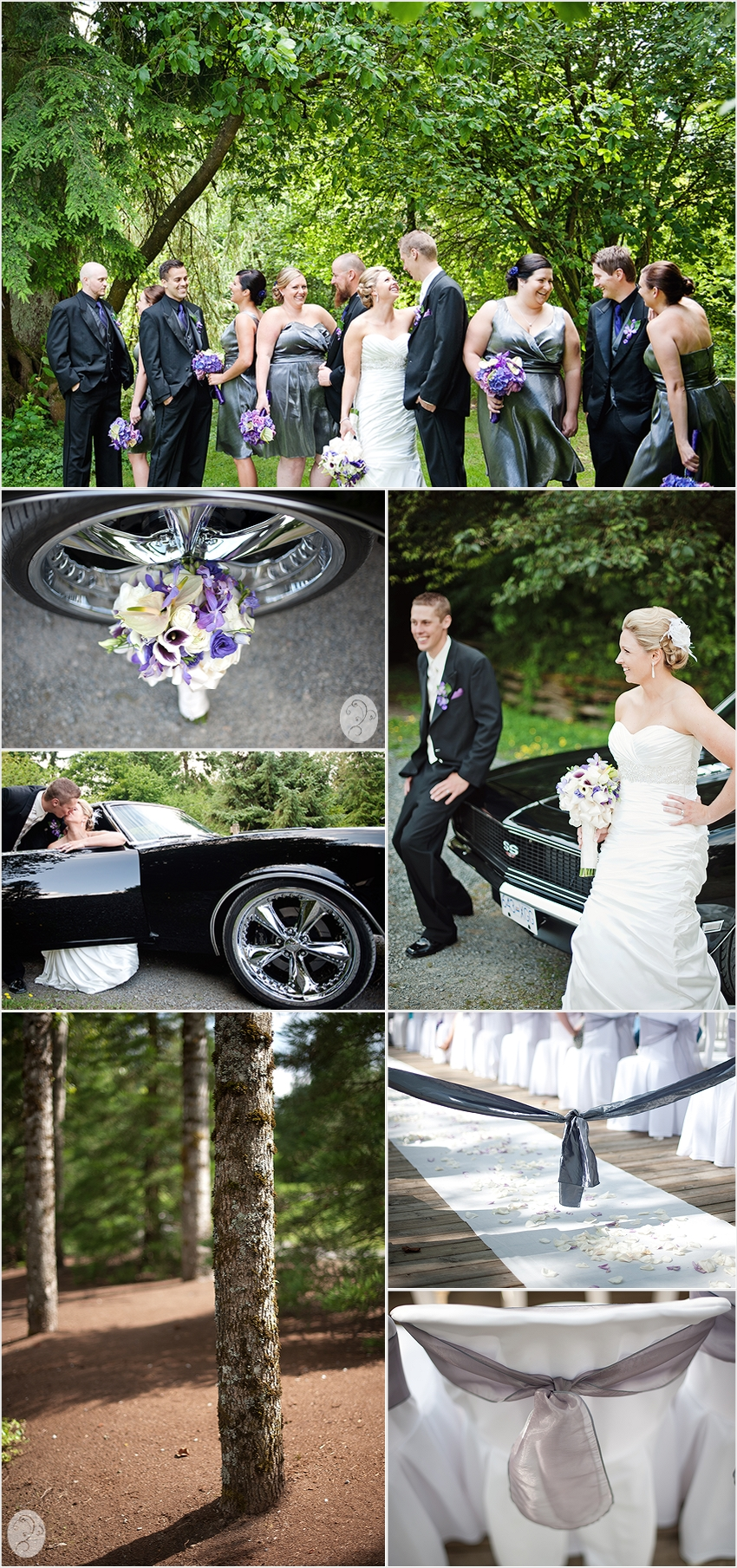 Kelsi Amp D Arcy S Wedding Abbotsford Wedding Photographer