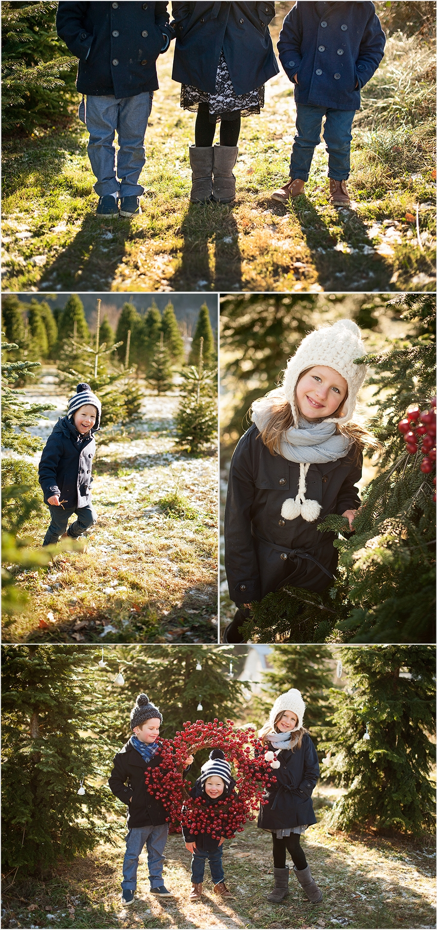 Christmas Tree Farm photos 006 (Side 6)