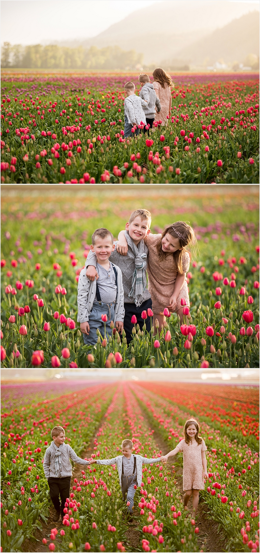 Abbotsford Photographer Family Children Tulip Farm Sunset 006 (Side 6)