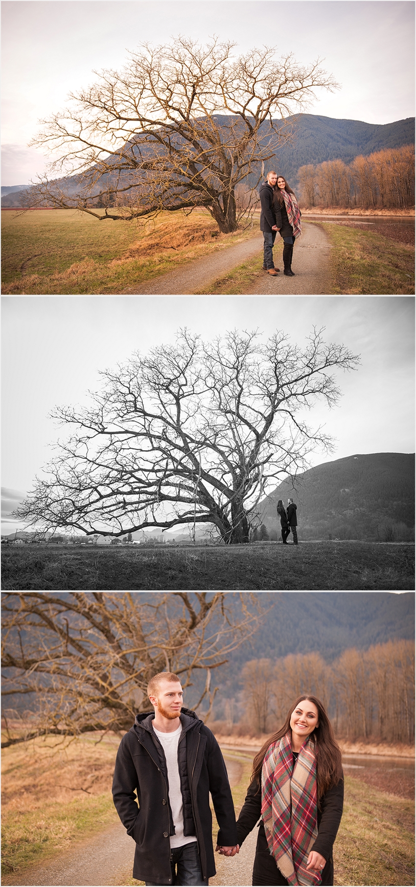 Abbotsford Wedding Photographer Engagement photo session 010 (Side 10)